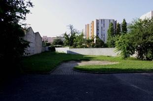 vign_Magnolias_terrain_en_bout_de_cour